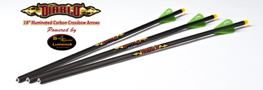 DIABLO ILLUMINATED Carbon Arrows,3ks
