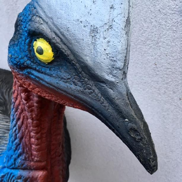 CASSOWARY WITH INSERT